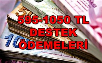 Başvuran Herkese Nakit Yardım 595 TL ile 1050 TL arasında Nakit Ödeme Yapılıyor